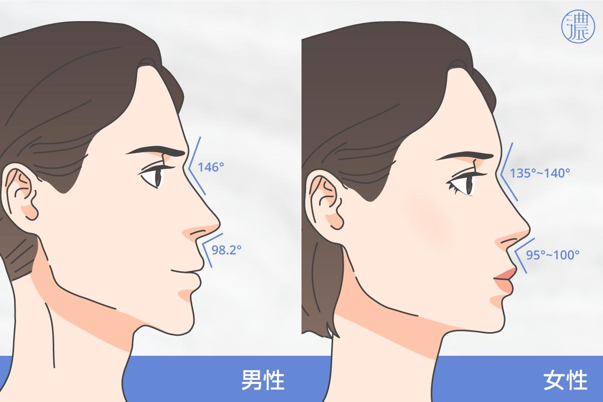 隆鼻適合的比例